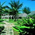 Palm Tree Club 2*