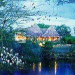 Finch Hattons Safari Camp 5*
