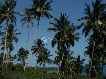 The Palms Zanzibar 5*