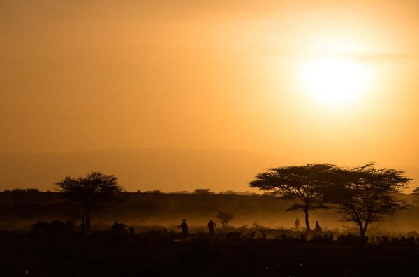 Другая Кения