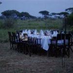 Lemala Ngorongoro 2*