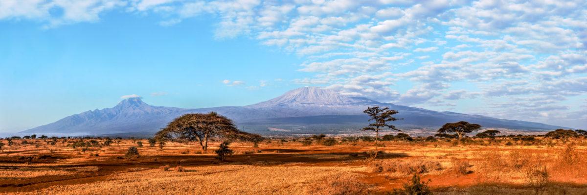 Туры в Кению и Танзанию — путешествие в мир экзотики